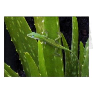 Anole lizard on Aloe plant Card