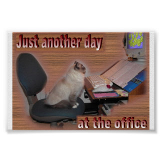 Another day at the office poster