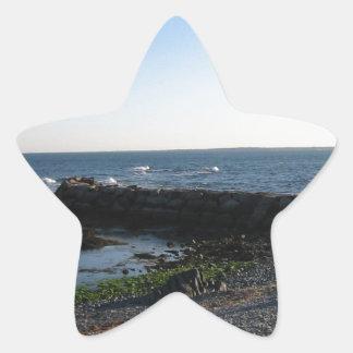Another Newport Beach Star Sticker
