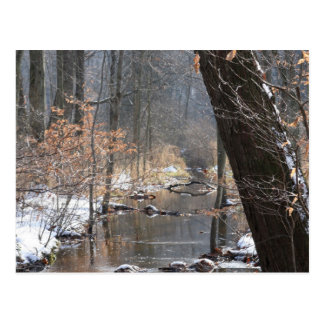 Another Winter Stream Postcard