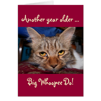 Another year older - big whoopee do birthday card