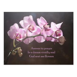 Answer To Prayer Postcard
