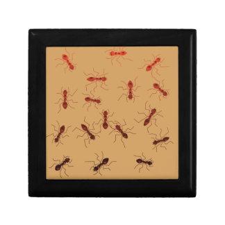 Ant antics. gift box