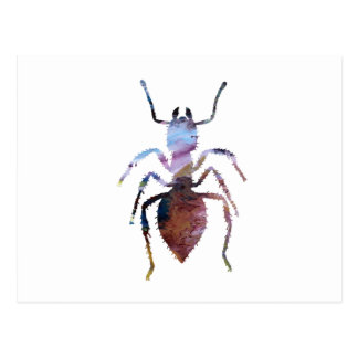 Ant art postcard