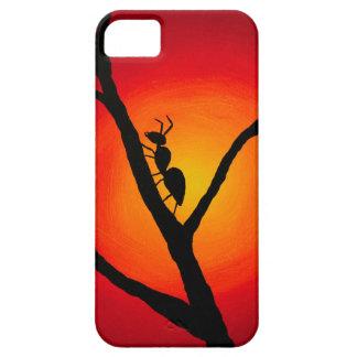 Ant case