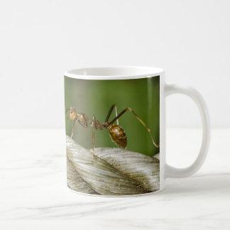 Ant Crossing Abaca Rope Mug