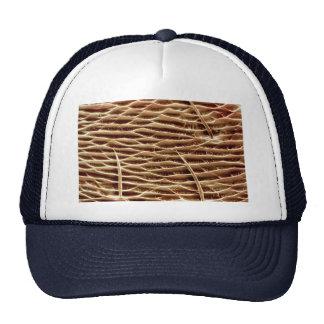 Ant - front leg hat