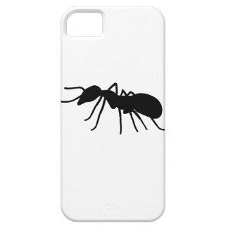 Ant iPhone 5 Case