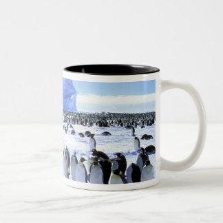 Antarctica, Antarctic Peninsula, Weddell Sea, 5 Two-Tone Coffee Mug