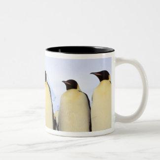 Antarctica, Antarctic Peninsula, Weddell Sea, Two-Tone Coffee Mug