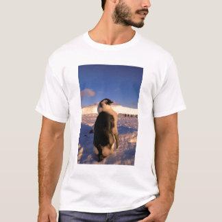 Antarctica, Australian Antarctic Territory, 2 T-Shirt