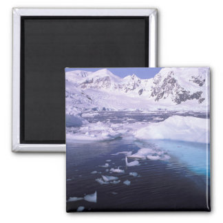 Antarctica. Expedition through icescapes Magnet