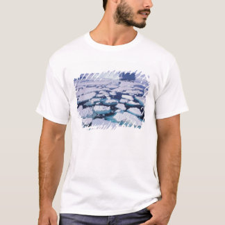 Antarctica, Ice flow. T-Shirt