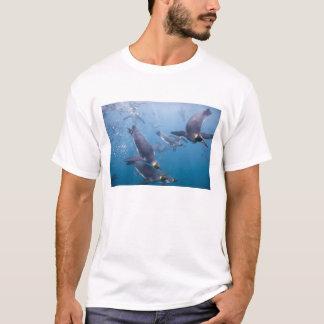 Antarctica, South Georgia Island (UK), 2 T-Shirt