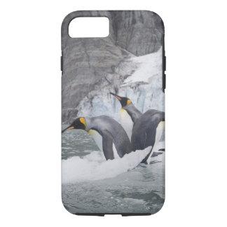 Antarctica, South Georgia Island (UK), King 14 iPhone 7 Case