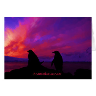 Antarctica Sunset card