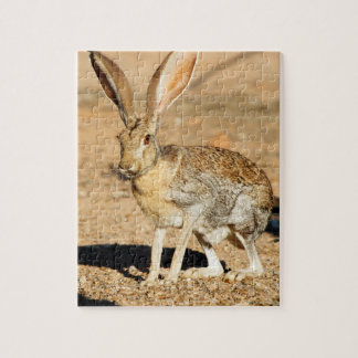 Antelope jackrabbit portrait, Arizona Jigsaw Puzzle