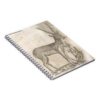 Antelope Notebooks