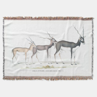 Antelope Throw Blanket
