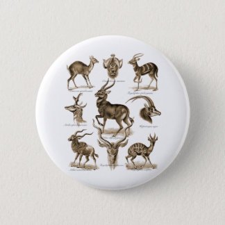 Antelopes 2 Inch Round Button