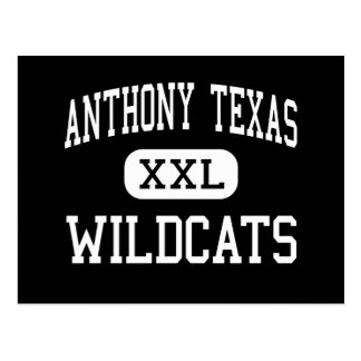 Anthony Texas - Wildcats - High - Anthony Texas Postcard