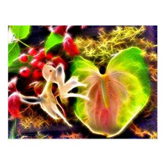 Anthurium Postcard