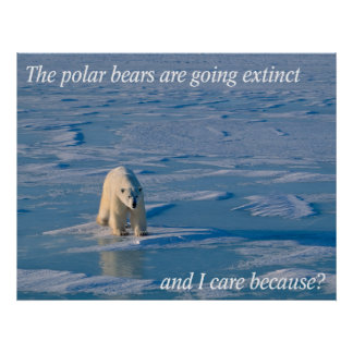 Anti-Polar Bears Poster