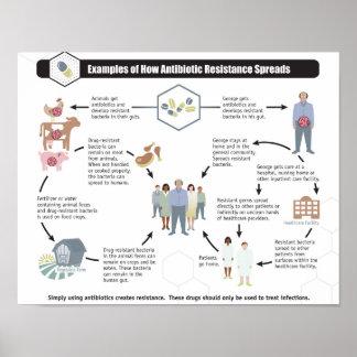 Antibiotic Resistance Health Wellness poster