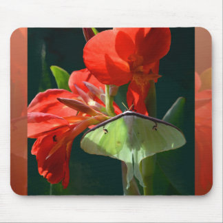 """""""Anticipation of the Night"""" - Luna Moth Painting Mouse Pad"""
