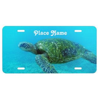 Antigua Hawk Billed Turtle License Plate