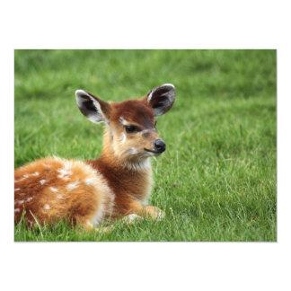 Antilope mignonne de bébé carton d'invitation  13,97 cm x 19,05 cm
