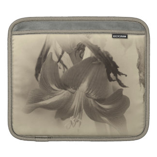 Antique Amaryllis Flower iPad Sleeve