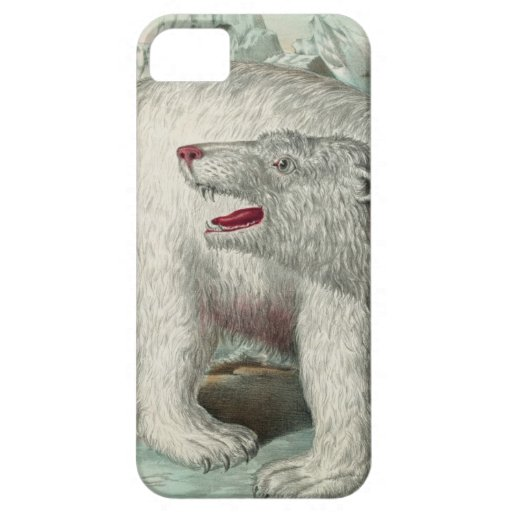 Antique and vintage coques iPhone 5 Case-Mate