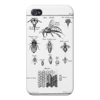 Antique Bees & Honeycomb iPhone 4/4S Case