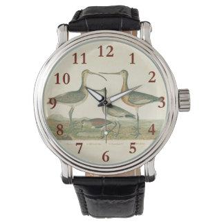 Antique Bird Print Marsh Coastal Wrist Watches