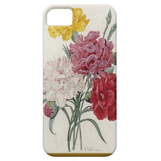 Antique Carnations In A Golden Frame iPhone 5 Case