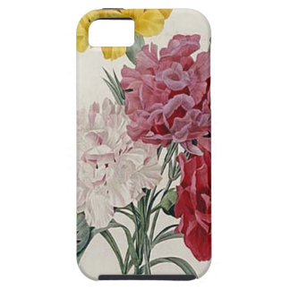 Antique Carnations In A Golden Frame iPhone 5 Cover