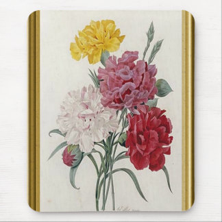 Antique Carnations In A Golden Frame Mouse Pad