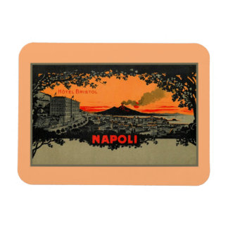 Antique color litho Hotel Bristol Naples Napoli Magnet