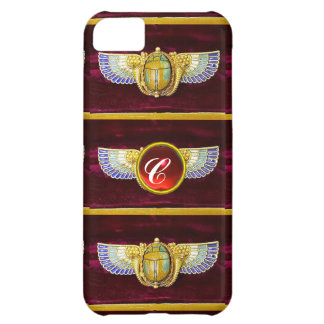 ANTIQUE EGYPTIAN WINGED SCARAB /CORNUCOPIA JEWEL CASE FOR iPhone 5C