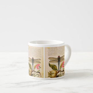 Antique Insects, Flowers, fruits Hoefnagel Espresso Cup