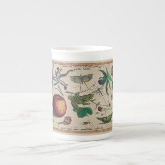 Antique Insects, Flowers, fruits Hoefnagel Tea Cup