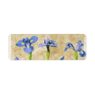 Antique Irises - Vintage Iris Background Customize