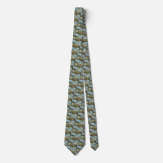 Antique Map Aerial View City of Seattle Washington Tie