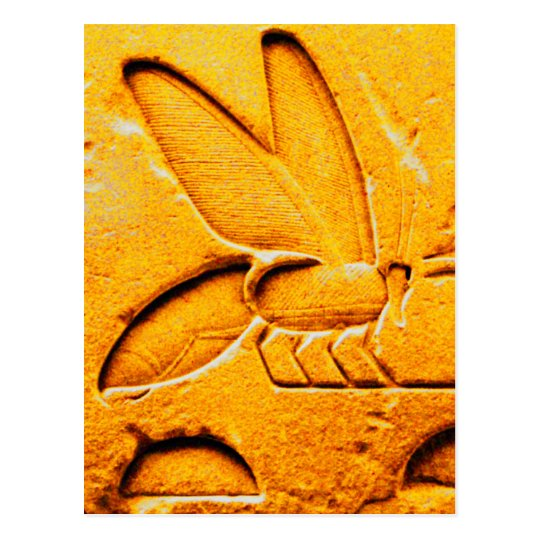 ANTIQUE ORANGE YELLOW EGYPTIAN HONEY BEE BEEKEEPER POSTCARD