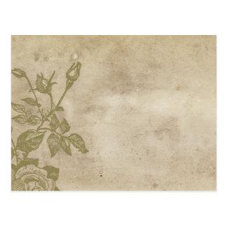 Antique Paper Rose Postcard