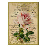 Antique Pink Roses Perfume Poster