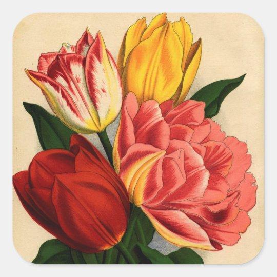 Antique Print Colourful Tulips Square Sticker