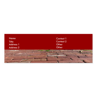 Antique Red Bricks Pack Of Skinny Business Cards