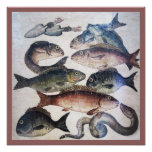 ANTIQUE ROMAN MOSAICS, FISHES,OCEAN SEA LIFE SCENE POSTER